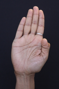 indian classical dance hand gesture